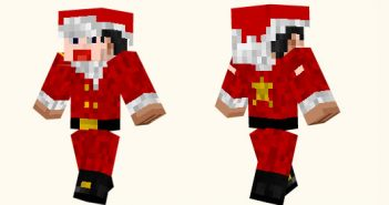Sdvn Christmas Skin