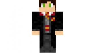 Harry potter gryffindor skin